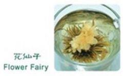 Flower fairy.jpg