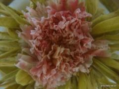 Carnation immortal peach.jpg
